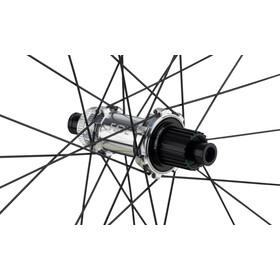 "NEWMEN Evolution SL E.G.30 Rear Wheel 29"" 12x148mm Straight Pull CL XD Fade, Plateado"
